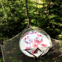 NUIT INSOLITE BULLE FORET GLAMPING (3)