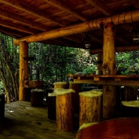 NUIT INSOLITE BULLE FORET GLAMPING comp3