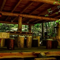 NUIT INSOLITE BULLE FORET GLAMPING comp4
